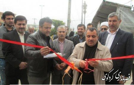 افتتاح نمايشگاه بهاره در كردكوي