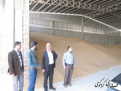 فرماندار از کارخانه آرد ستایش کردکوی بازدیدکرد