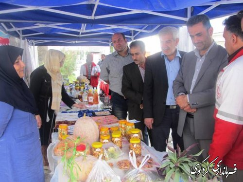 بازدید بخشدار کردکوی از نمایشگاه توانمندی های زنان روستایی