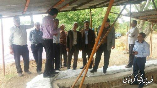 بازدید جمالی فرماندار  از مکانهای تاریخی روستای گردشگری سرکلانه کردکوی