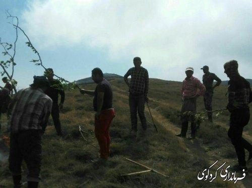 وقوع آتشسوزی در منطقه «جهاننما» کردکوی/ 8 هکتار مرتع طعمه حریق شد.