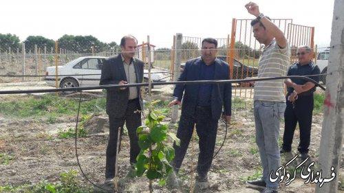 ۲۸۰۰ هکتار از انواع باغات مرکبات سطح شهرستان به شیوه قطره ای ابیاری میگردد.