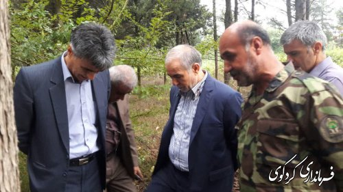 طرح واگذاری و۶۰هکتار از اراضی جنگلی کردکوی به شهرداری وتبدیل آن به پارک جنگلی بصورت میدانی بررسی شد