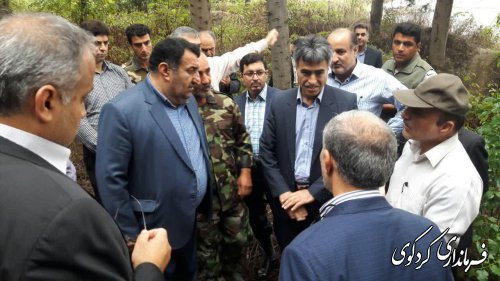 طرح واگذاری ۶۰هکتار از اراضی جنگلی کردکوی به شهرداری وتبدیل آن به پارک جنگلی بصورت میدانی بررسی شد