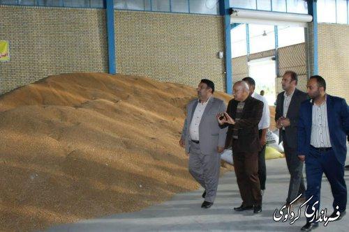 سیلوی شرکت تعاونی واتاش بالاجاده در بهمن ماه افتتاح می شود