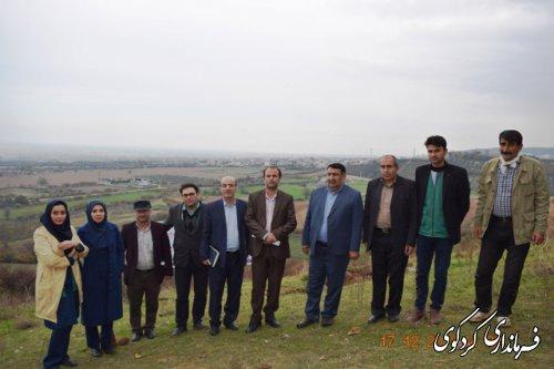 ۱۰۰ هکتار از اراضی شیبدار سطح شهرستان در سال جاری زیتون کاری می گردد