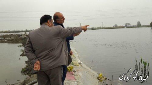 قدمنان رئیس مدیریت بحران شهرستان: سطح سیلاب در اراضی کشاورزی پایین تر آمد.