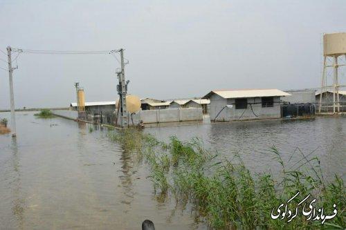 بازدید میدانی فرماندار از زمینهای کشاورزی زیرآب چلدین کردکوی
