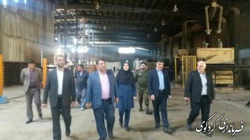 فرماندار کردکوی با تفاق مدیرکل صمت از کارخانه تولید نئوپان شهرستان بازدید کردند