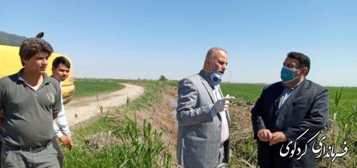 قدمنان فرماندار:   آغاز مرحله نخست زهکشی اراضی کشاوزی شهرستان با اعتبار 1 میلیارد ۲۰۰ میلیون تومان .