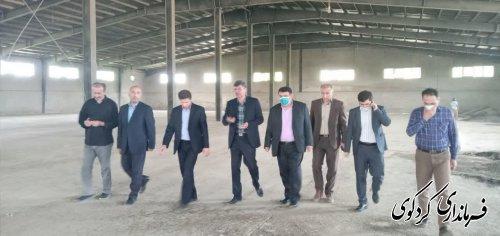قدمنان فرماندار کردکوی: از مجموع ۱۹۰۰ هکتار از اراضی کشت کلزا در سطح شهرستان بیش از ۳۴۰۰ تن کلزا برداشت خواهد شد.
