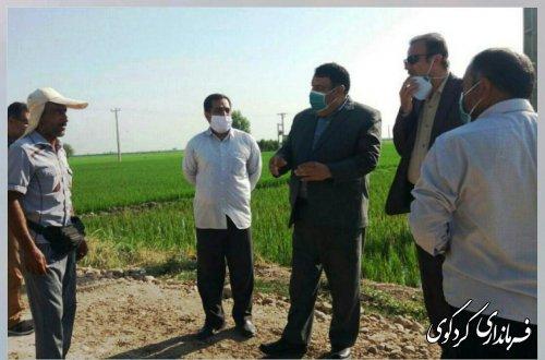اعتبار 3میلیارد تومانی به بهسازی و باز سازی جاده های بین مزارع  شهرستان کردکوی اختصاص یافت .