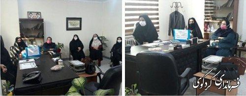دومین نشست ویدیو کنفرانس حوزه زنان و خانواده   با حضور کارشناسان و مشاوران بانوان فرمانداری های استان برگزارشد