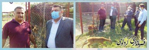 دکتر نهضتی رئیس دانشگاه پیام نور استان و هیات همراه با ابراهیم قدمنان فرماندار کردکوی