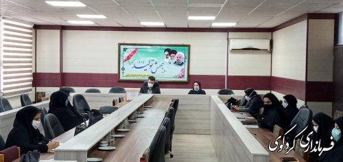 نشست گروه کاری مناسبتها و مشاوران بانوان کمیته بانوان و خانواده فرمانداری شهرستان