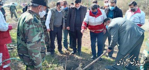 ایجاد کمربند سبز در محور کردکوی به بندر ترکمن الزامی است.
