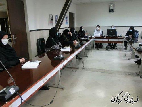 جلسه اتاق فکر سلامت کمیته بانوان و خانواده شهرستان تشکیل شد
