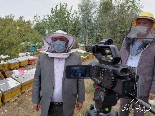 میزان تولید سالانه عسل شهرستان بین ۶۰_۷۰ تن براورد می شود