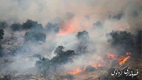 اتش سوزی در جنگلهای مناطق کوهستانی کردکوی