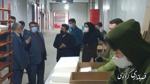 فرماندار کردکوی از شهرک صنعتی امام خمینی( ره )قلندرآیش شهرستان بازدید کرد.
